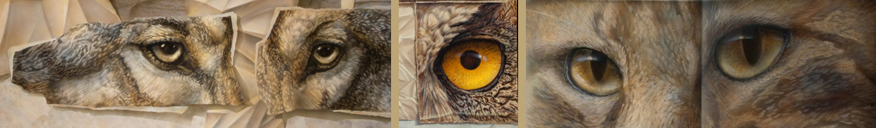 paintings of owl-eyes